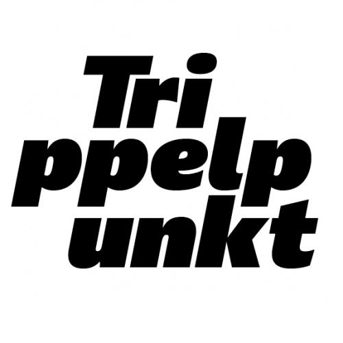 Trippelpunkt